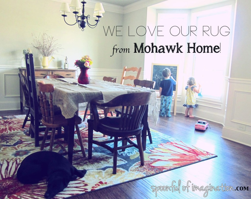 Mohawk Home Rug Giveaway