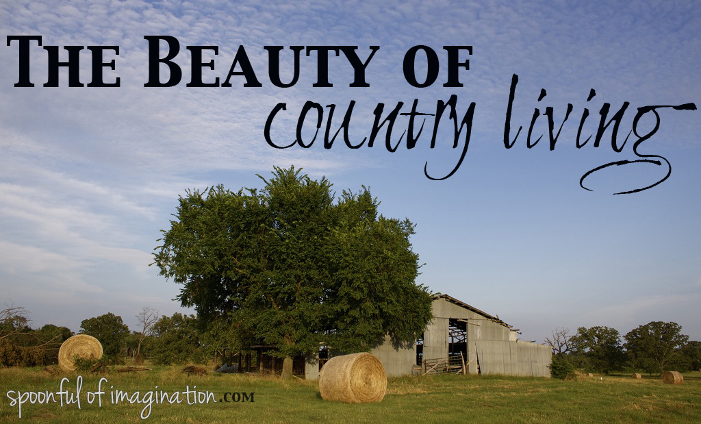 the beauty of country living